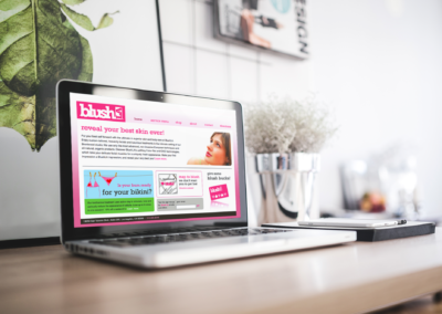 Website Design Concepts | BlushLA